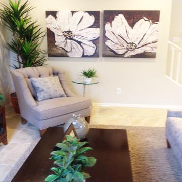 Az model home furniture sales